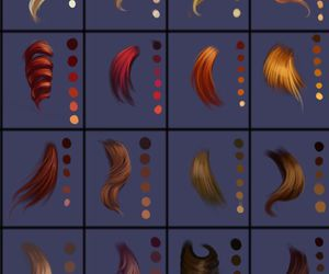 hair and palette image