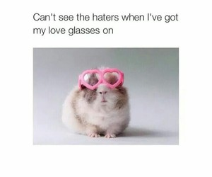 haters, funny, and glasses image