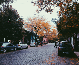 argentina, autumn, and colors image