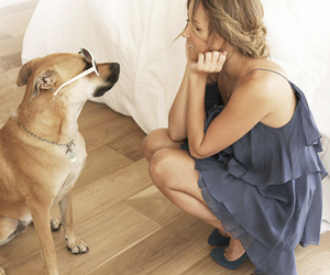 dog and lauren conrad image