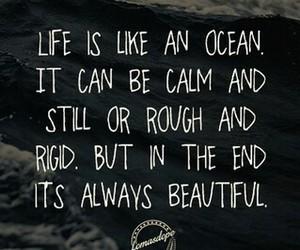 beautiful, life, and ocean image