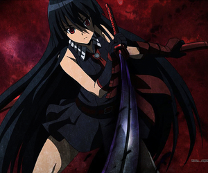 akame ga kill, akame, and night raid image
