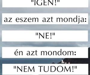 idézetek and magyar idézetek image
