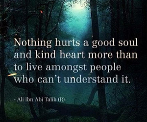 quotes, hurt, and soul image