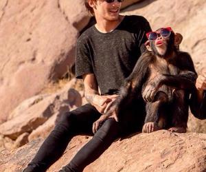 eli, louis tomlinson, and steal my girl image