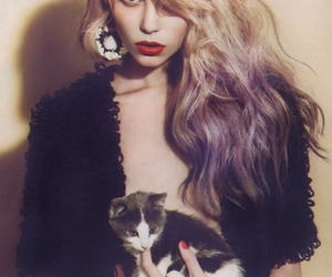 cat, hair, and model image