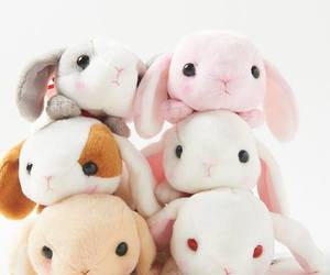 kawaii, rabbit, and cute image