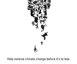animals, climate change, and earth image