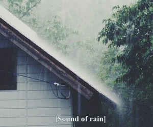 grunge, hipster, and rain image