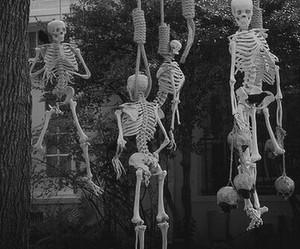 skeleton, Halloween, and tree image