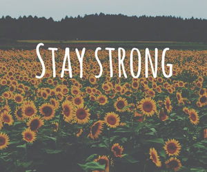 stay strong, grunge, and nature image