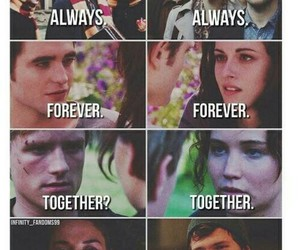 always, forever, and the hunger games image