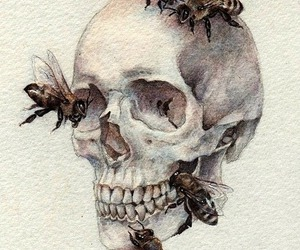 skull, bee, and art image