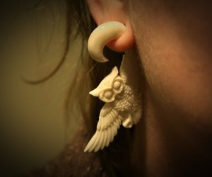 earring and owl image
