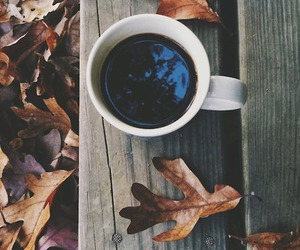 autumn, drinks, and coffee image