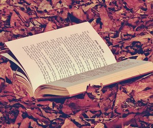 book, autumn, and leaves image