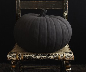 Halloween, black, and pumpkin image