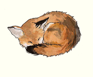 fox, animal, and art image