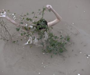 girl, plants, and arms image