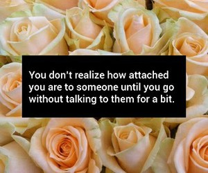attachment, missing someone, and qoute image
