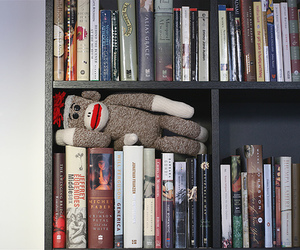 Archie, home, and bookcase image