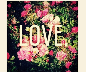 flowers, love, and beauty image