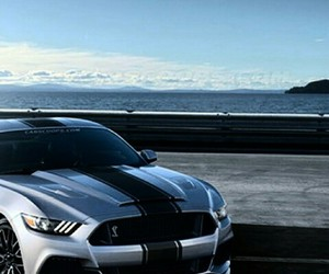 beach and mustang image
