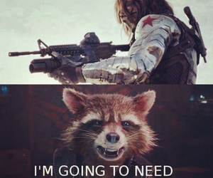 rocket, guardians of the galaxy, and funny image