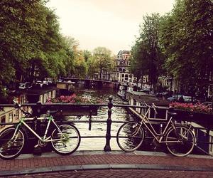 bike, bridge, and city image