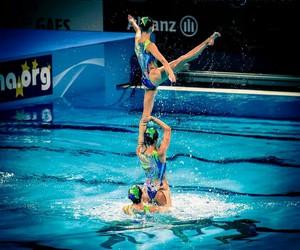 amazing, swimming, and beautiful image
