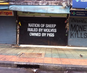 quotes, sheep, and wolf image