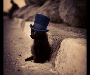 <3, animals, and fancy image