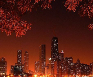 city, chicago, and night image
