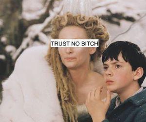 bitch, trust no bitch, and trust image