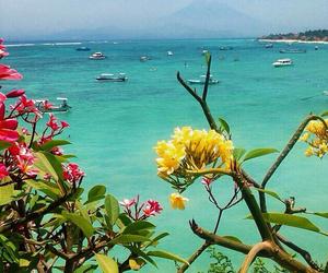 beach, bali, and beautiful image