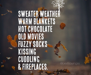 autumn, blankets, and cuddle image