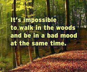 hiking and quotes image