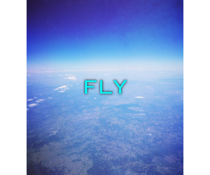 blue, fly, and blue sky image