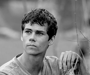 handsome, thomas, and the maze runner image