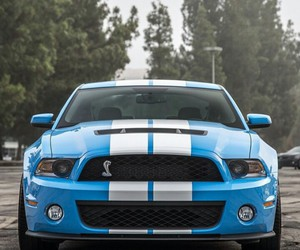 blue, cars, and mustang image