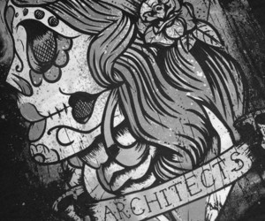 architects, skull, and tattoo image