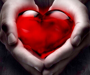 black and white, hands, and red heart image