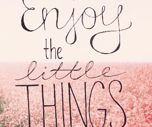 enjoy, quotes, and things image