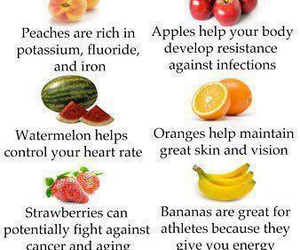aging, energy, and FRUiTS image