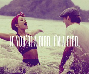 the notebook and love image