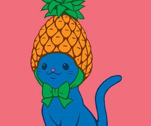 cat, pineapple, and cute image