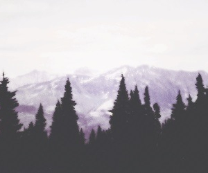 header, twitter, and mountains image