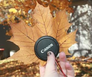 autumn, camera, and canon image