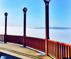 bridge, california, and golden gate image