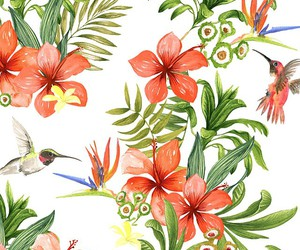 hibiscus, print, and watercolour image